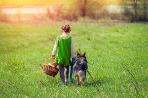 Little girl walking with dog on the meadow back to camera