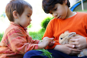 Little kid with bunny