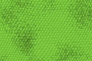 Lizard Skin Pattern