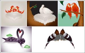 Love Birds Vectors