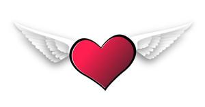 Love Heart Flying