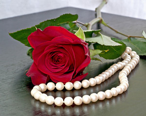 Love Roses And Pearls