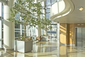 Luxury Hotel Interior 295