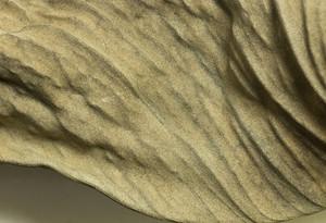 Macro Texture 27