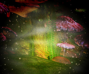 Magic Mushrooms Background