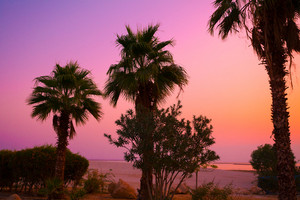 Magic pink sunrise over Dead Sea shore