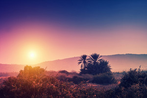 Magic sunrise over desert. Israel.