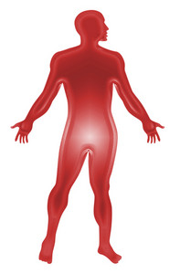 Male Human Anatomy Outline Red