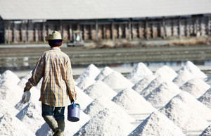 Man Raking In The Salt Field