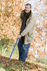 Man tidying autumn leaves with rake