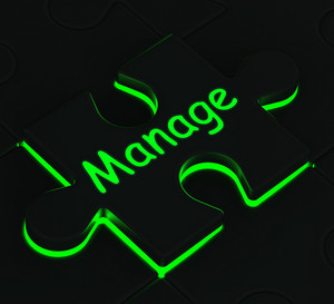 Manage Puzzle Shows Business Manager