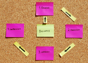 Management Vectors (business Definiton)