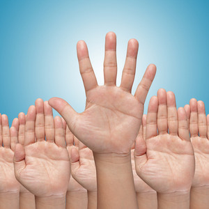 Many Hands Raise High Up