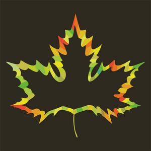 Maple Leaf Design On White