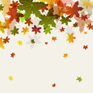 Maple Leaves On Abstract Background For Autumn Season