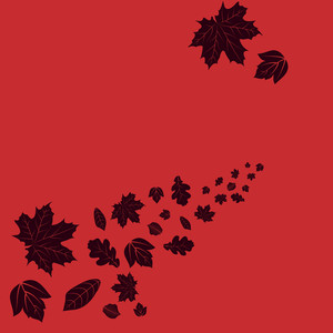 Maple Leaves On Bright Red Background For Autumn Season