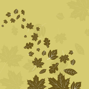 Maple Leaves On Green Background For Autumn Season