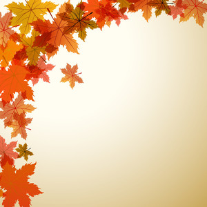 Maple Leaves With Text Space