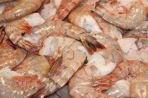 Market Pink Shrimp