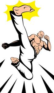 Martial Arts Kung Fu Karate Kick
