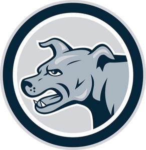 Mastiff Dog Mongrel Head Side Circle