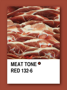 Meat Tone Red. Color Sample Design