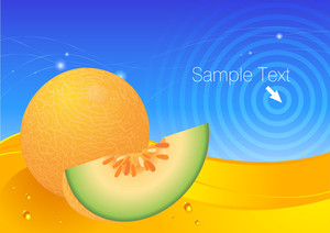 Melon Fresh Vector Background.