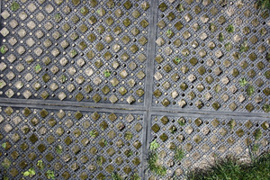 Metal Grates And Fences 3 Texture