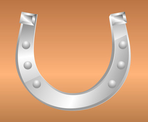 Metallic Fortune Horseshoe
