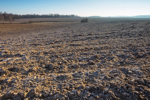 Beautiful plowed field autumnal landscape photographed in nice morning light under blue sky. Tranquil rural scene of plowed polish fields photographed with full frame camera.