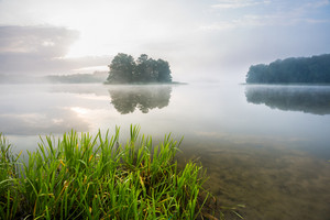 Beautiful morning foggy lake landscape