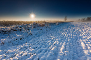 Beautiful winter sunrise or sunset landscape. Sun over agricultural field.