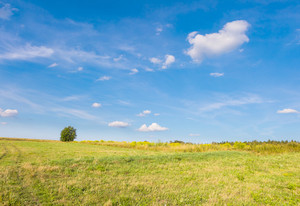 Rural landscape of polish countryside. Field or meadow under blue sky with clouds. Tranquil scene.