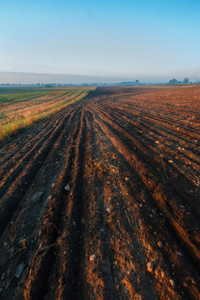 Morning landscape of polish countryside with plowed field on foreground