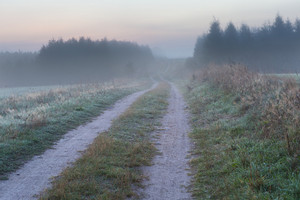 Beautiful morning landscape on countryside. Foggy and calm morning near polish villages. Tranquil scene