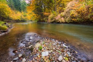 Beautiful landscape with wild river in autumnal forest. Wadag river in Poland