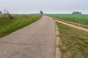 Asphalt rural road in countryside. Polish fields with asphalt road under cloudy sky.