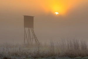 Beautiful sunrise over foggy meadow with raised hide. Tranquil rural scene photographed with full frame camera.