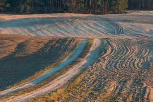Plowed and sown field landscpe with sandy rural road photographed in Poland at early springtime. Beautiful rural countryside at sunset with golden light