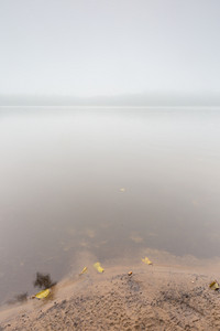 Shore of autumnal foggy lake. Beautiful polish landscape photographed in september at bad weather.