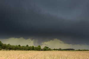 Dark stormy clouds over corn field at summer. Frightening storm over countryside.