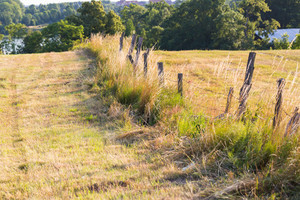Close up of old destroyed fence with barbed wire on field. Beautiful summer landscape