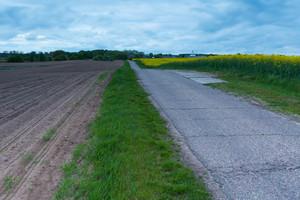 在附近的春天場鄉柏油路。平靜波蘭農村