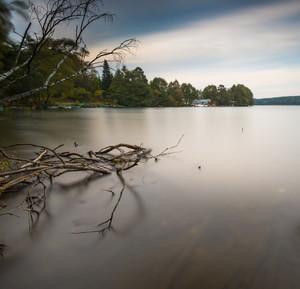 死んだ木の幹や流木で湖岸の長時間露光風景。オルシティン湖Krzywe