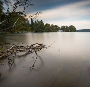Long exposure landscape of lake shore with dead tree trunk and driftwood. Lake Krzywe in Olsztyn