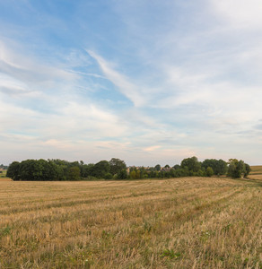 Beautiful after harvest field. Autumnal landscape of polish countryside.
