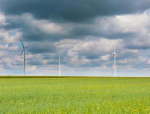 Windmills standing on corn field. Beautiful rural landscape with windmills.