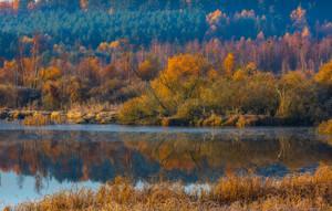 Morning lake at autumn. Beautiful landscape of wild misty lake at sunrise. Polish landscape