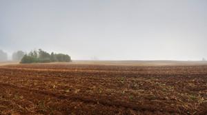 Plowed autumnal field landscape. Polish countryside