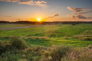 Beautiful sunset over green wild grassland in poland
